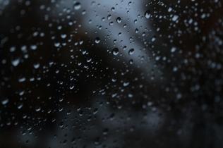 Rainy #2