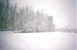 Snow in Arkansas #2