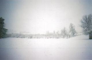 Snow in Arkansas #1